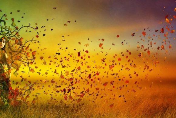Lo Shiatsu e il cambio di stagione: dall'estate all'autunno